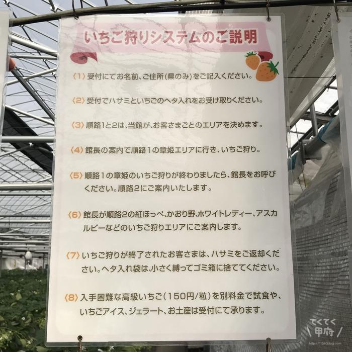 山梨-無農薬いちご狩り(グルメいちご館前田)
