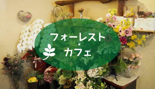【フォーレスト・カフェ】カレーが絶品!お花いっぱいの癒しカフェ