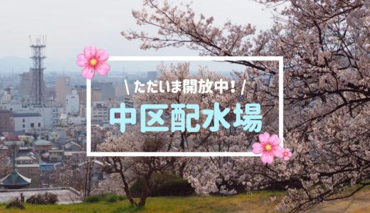 【中区配水場】甲府で桜を観るなら、今しか入れない秘密の場所へ行こう