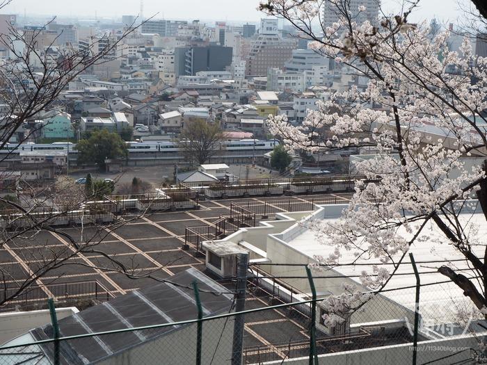山梨県甲府市-中区配水場の桜と特急スーパーあずさ