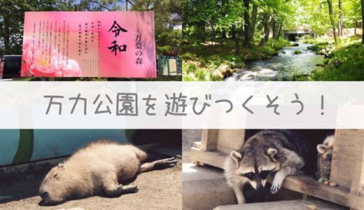【万力公園】新元号「令和」が話題!アライグマやホタルに会える山梨の公園を遊びつくそう!