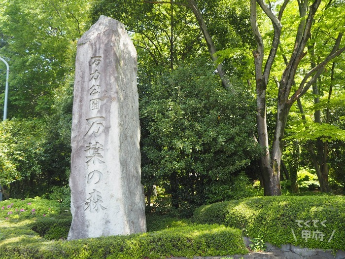 【万力公園】令和で話題の山梨の公園!川遊び・BBQ・アライグマやカピバラ、ホタルにも会える!