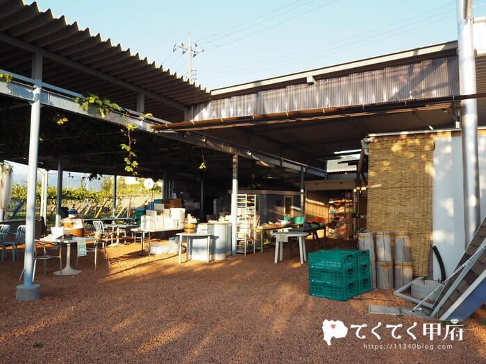 【志村葡萄研究所】超希少!ブラックシャインマスカット「富士の輝」を購入