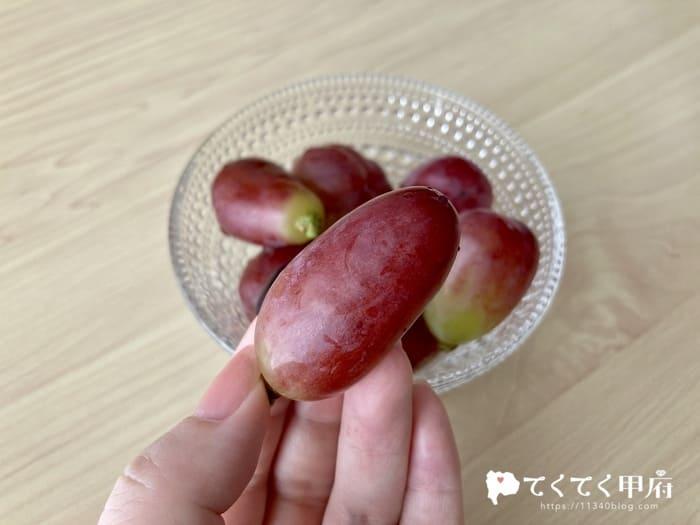 志村葡萄研究所で購入したマドンナの宝石